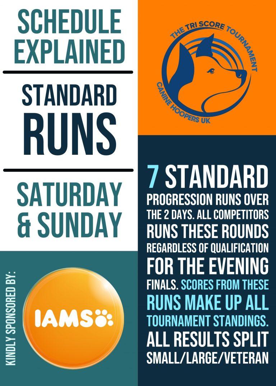 Standard Runs Explainer